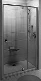 Душевая дверь Ravak Pivot PDOP2-120